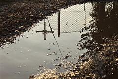 27/10/2010 (ClaraWendy) Tags: sunset sun water sunshine rain puddle reflex tramonto cross cloudy walk country memories thoughts memory thinking sole acqua ricordi pioggia crux croce reflexes ricordo pozzanghera pascoli evoluzione
