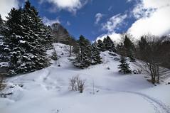20160318_0117 (Simon Buchou) Tags: light snow france ice rock stone montagne rando climbing summit neige foret arbre moutain glace alpinisme pyrnes escalade avalanche ambiance randonne gavarnie sommet