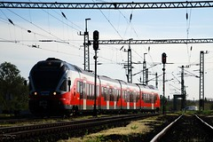 5341.019 (Tams Tokai) Tags: train eisenbahn railway zug loco locomotive bahn railways lokomotive lok vonat vast