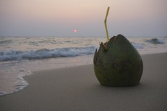 DSC03921 (picturesfrommars) Tags: sunset beach cambodia kambodscha sihanoukville coconut otres a6000 selp1650