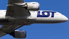 IMG_2291 (boguslaw_pogoda) Tags: plane canon photography airport linie aircraft aviation lot polish warsaw chopin boeing airlines waw b787 epwa okecie dreamliner lotnicze boeing787 polskielinielotnicze plllot b7878 boeing7878 b78785d splrc flylot boeing78785d