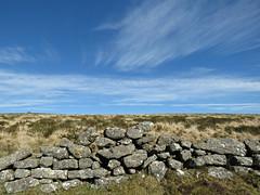 Moorland Clouds! ('cosmicgirl1960' NEW CANON CAMERA) Tags: blue sky white green stone clouds devon moors bracken walls dartmoor yabbadabbadoo