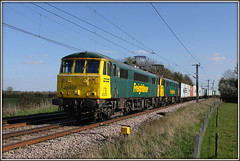 'New' Girl on the Block! (Jason 87030) Tags: camera green girl yellow train canon fence eos gallery shot image transport northamptonshire picture loco christine cargo fave engines views april ac amateur bizarre northants ts felixstowe containers lasses liner alternatingcurrent 2016 freightliner billynomates traffordpark lineside 86501 86604 86608 al6 watfordvillage goodoldgirl 4m87 flickjr