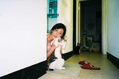 SML_160420_NATURA_0037 ( Sean Marc Lee ) Tags: cat taiwan natura 1600 fujifilm taipei susu classica guabao catsandgirls