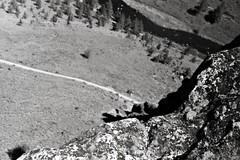River runs through it (samdabull) Tags: olympus om1 oly 50mmlens 35mmcamera