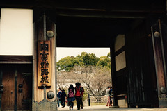 (terefly) Tags: heritage nationaltreasure himejicastle