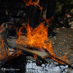 A Wispy Bonny (sopwell287) Tags: wood orange fire nikon flames bonfire wispy d60 unlimitedphotos