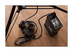 short brake .... (Istvan Penzes) Tags: quadra cameraporn nikond3x penzes nikonmicronikkorafd60mm28 elinchromelb400