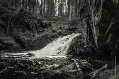 waterfall (imagomagia) Tags: abstract art nature forest waterfall artgallery sweden cave bnw fineartphotography blackandwhitephotography artphoto toning artphotography artofvisuals