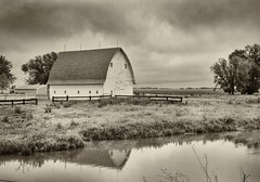 The White Barn (Explored 4-30-16) (slammerking) Tags: trees sky bw reflection water barn fence blackwhite pond nikon farm grain kansas lightningrod niksilverefexpro