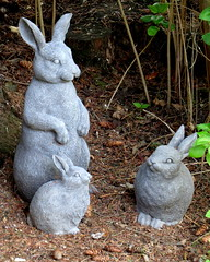 Turned to stone? (diffuse) Tags: bunnies backyard whimsy statues figurines rabbits odc 16apr26