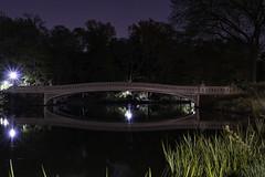 Day 207/365 (Alexander Marte Reyes) Tags: park newyorkcity longexposure nightphotography reflection centralpark bowbridge nikonphotographers