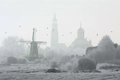 2009_IMG_0710b (niek haak) Tags: winter snow windmill skyline sneeuw middelburg molen langejan