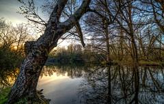 A spring evening at Billebjer (f_bertilsson) Tags: sunset lund reflection water evening spring vatten vr solnedgng kvll yta billebjer vattenyta
