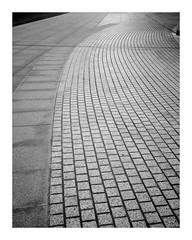 paths meet (more fire E17) Tags: blackandwhite bw blancoynegro path bricks thecity broadgate paving cityoflondon broadgatecircle
