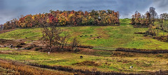 IMG_6298-00Ptzl1scTBbLG2 (ultravivid imaging) Tags: autumn horses clouds canon colorful farm vivid autumncolors fields imaging ultra stormclouds ultravivid canon5dmk2 ultravividimaging