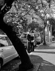 The big chill (Indian_Forever) Tags: street bw 100v10f bn