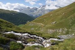 running water (Riex) Tags: mountains alps green alpes landscape schweiz switzerland stream suisse path trail greenery svizzera paysage chemin verdure a100 engadine montagnes amount graubnden grisons ruisseau graubunden sal1680z verdatre minoltaamount carlzeisssonyf35451680mm sgrischus variosonnartdt35451680