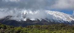 Kilimanjaro - and some clouds... (Stefan Giese) Tags: cloud mountain kilimanjaro berg clouds tanzania wolken grau panasonic summit tansania tz6
