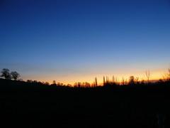 LAst Light Over Northamptonshire (cycle.nut66) Tags: blue trees winter light sky orange skyline last lumix dusk horizon deep frosty panasonic clear fz8