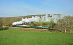 Countryside scene (DaveStubbings) Tags: heritage steam southern preserved sr steamengine steamrailway preservation steamtrain southernrailway steamlocomotive britishrailways t9 preservedrailway herston lswr swanagerailway 30120 heritagerailway timelineevents