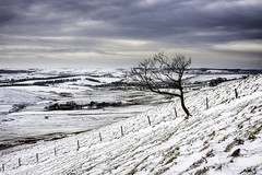 Snowy Scene (ben_wtrs79) Tags: sky snow tree canon fence landscape moody district sigma peak 1750 28 40d