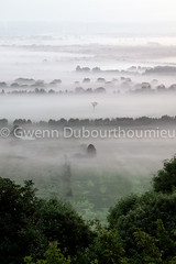 Marais Vernier-2 (Gwenn Dubourthoumieu) Tags: france nature normandie geo marais ecologie environement maraisvernier