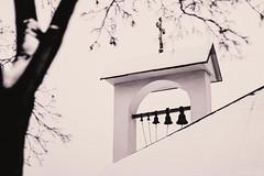 watching the silence (alicebutenko) Tags: winter white snow black tree church bells moments solitude mood memories atmosphere fragile meditative