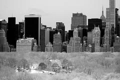 central park, NYC in white (dannydalypix) Tags: newyorkcity blackandwhite bw snow centralpark manhattan gotham concretejungle newyorksnow