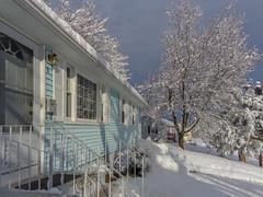 DSC01625-2 (johnjmurphyiii) Tags: winter usa snow connecticut shelly cromwell originaljpeg johnjmurphyiii 06416 sonycybershotdsch90