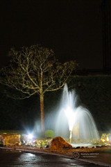 2016 - 40/366 - Fountain (talie33) Tags: fontaine nuit arbre 366project 2016p366 project3662016 201640366