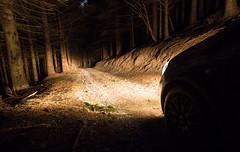 Return to home (Alessandro Iaquinta) Tags: wood longexposure friends italy nature night forest canon dark eos reflex exposure italia adventure 5d fullframe dslr notte manfrotto bosco picoftheday 5dmarkiii