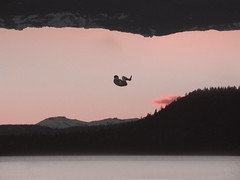 Rebirth (Brad_y11) Tags: pink trees portrait lake mountains color silhouette photoshop sunrise flying tahoe floating fetal postion