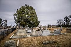 Spann Methodist Church and Cemetery-007 (RandomConnections) Tags: church cemetery southcarolina ward methodist spannmethodistchurch