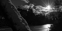 Cally Loch, Dunkeld (grahamrobb888) Tags: sun snow reflection ice scotland blackwhite perthshire local dunkeld nikond800 on1pics