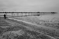A still day (tabulator_1) Tags: blackwhite southport southportpier