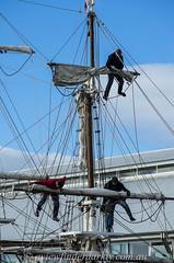 Sail chores (Cardesson) Tags: tallships justpentax