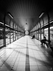 Estacin (zigmalgama) Tags: bus stop leon gto