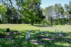 DSC_0292.jpg (SouthernPhotos@outlook.com) Tags: cemetery us unitedstates alabama sumtercounty larrybell browncemetery emelle larebel larebell
