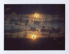 Timeless (benjaflynn) Tags: light sunset sky plants sun film nature grass silhouette clouds analog rural vintage dead polaroid iso100 evening countryside sticks fuji antique doubleexposure horizon retro multipleexposure flip fujifilm filmcamera prairie trippy setting bellows manualfocus instantcamera pola cloudporn rotated landcamera packfilm opensky foldingcamera instantfilm instantprint thecountry scannedfilm primelens sunsetporn fp100c skyporn automatic230 polalove doubleexpo rurality fixedfocallength peelapartfilm theprairie epsonperfectionv500 benseidelman sauerfamilyprairiekame landcameraauto230 polaroid114mmf88lens