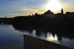 Cara al sol (con la cmara a cuestas) 052 (setneuf leunam) Tags: nature by nikon