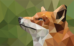 Lapsa (Aldini De Magnifico) Tags: orange brown white green nature animal animals yellow grey warm fox orrange