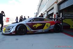 Team Marc Vds EG 0,0 Renault Sport nº 15