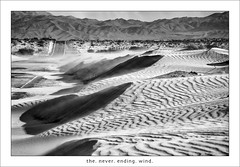 the. never. ending. wind. (_RedShoesGirl_) Tags: sand wind mojavedesert newberrysprings blowingsand harvardroad