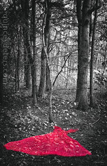 Red Dress (Quincey Deters) Tags: red vertical forest dress september allrightsreserved selectivecolour 2015 redressproject quinceydeters