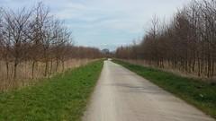 Der Weg ist das Ziel... (rocknrolltheke) Tags: way path nrw weg pfad northrhinewestfalia
