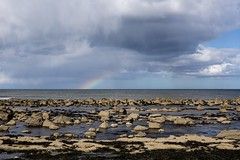 2-5-2016 (Copperhobnob) Tags: beach coast scotland spring alone fife shore nokids kingsbarns freeeeeee