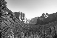 El Capitan, Bridal Veil Falls and Halfdome (IngoRichter) Tags: nationalpark urlaub yosemite mercedriver