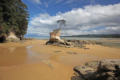 Abel Tasman national park (crijnfotin) Tags: abeltasmannationalpark