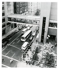 Hunter College Buildings Exterior View (Hunter College Archives) Tags: bridge building buildings exterior yearbook hunter 1995 subwayentrance subwaystation lexingtonave huntercollege 68thst hunterwest wistarion thewistarion huntercollegeeast huntereast huntercollegewest